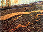 Vincent van Gogh, Enclosed Field with Ploughman, 1889, oil on canvas, 19.3 x 24.4 in. / 49 x 62 cm, US$280