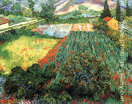 Vincent van Gogh, Field with Poppies, 1889, oil on canvas, 28 x 35.8 in. / 71 x 91 cm, US$320