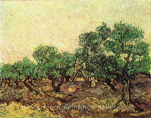 Vincent van Gogh, Olive Picking II, 1889, oil on canvas,  28.7 x 36.2 in. / 73 x 92 cm, US$570